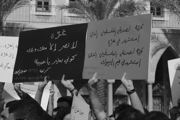 students-gaza-syria-fight
